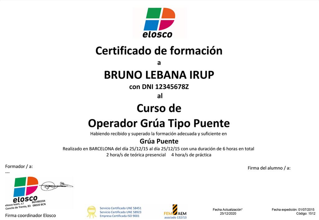 Diploma Operador Grua Puente